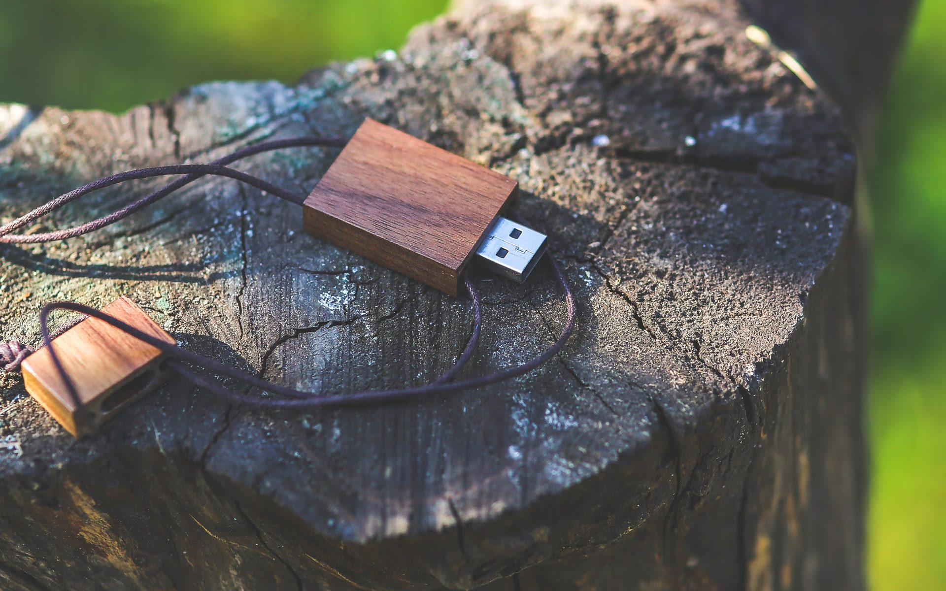 Wood-grain USB thumb drive laying on tree stump